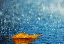 Giải mã giấc mơ thấy mưa - mơ thấy mưa điềm báo điều gì